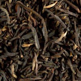 black-tea-smokey-crocodile